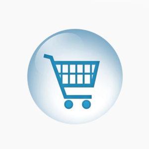 audyt sklepu online
